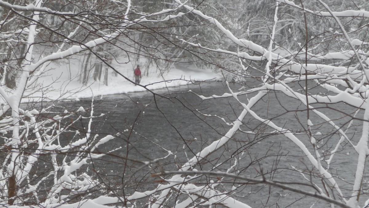 Salmon river (NY, USA), décembre 2015